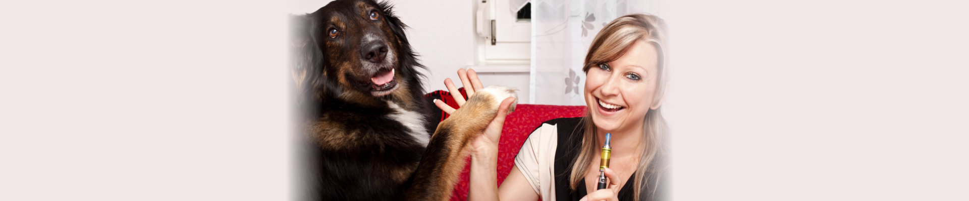 adult woman shaking hands with a dog